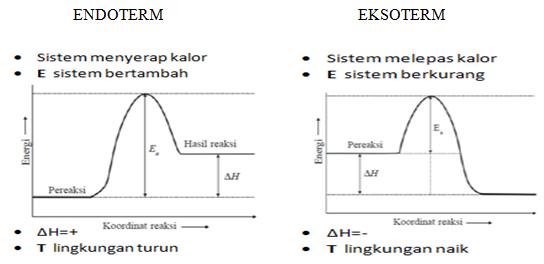 Kenali perbedaan reaksi eksoterm dan reaksi endoterm dengan mudah reaksi eksoterm dan endoterm endoterm eksoterm ccuart Gallery