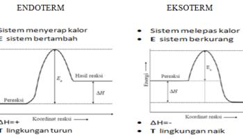 Pemisahan campuran rasemik bisakimia kenali perbedaan reaksi eksoterm dan reaksi endoterm dengan mudah ccuart Image collections