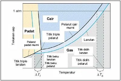 Sifat sifat larutan sifat koligatif larutan bisakimia diagram fasa koligatif ccuart Image collections