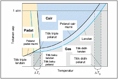 diagram fasa koligatif